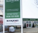 bearwood-0561_web_0